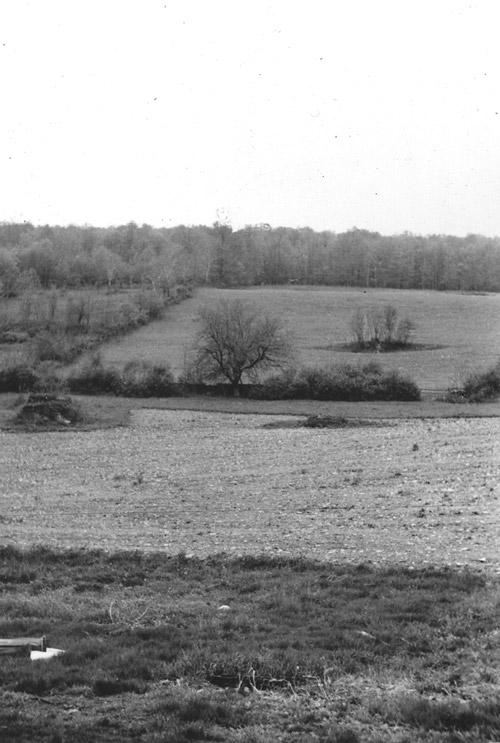 Dennis_Farm,_old_black_&_white_photos_005